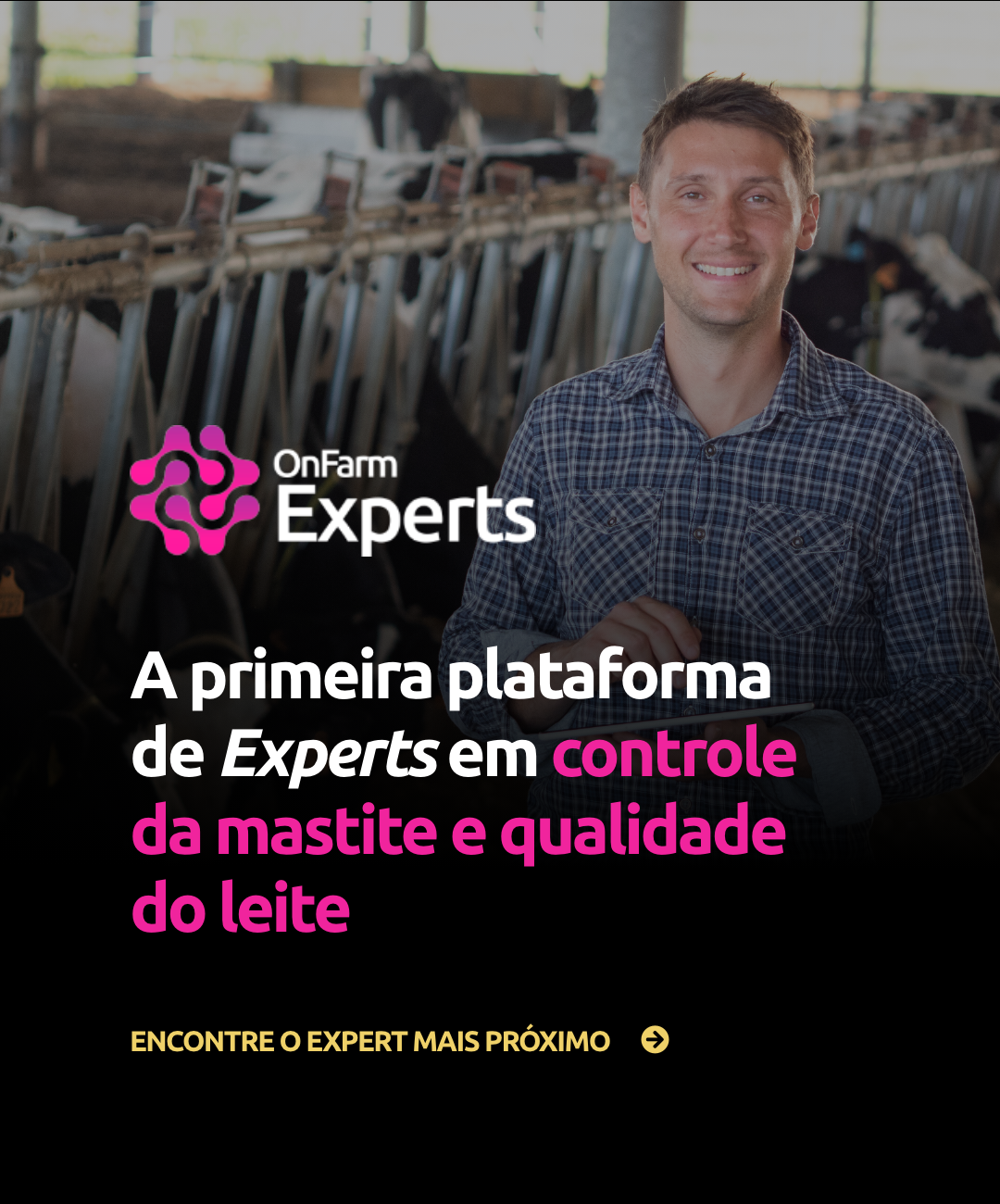 BANNER_EXPERTS_MOBILE